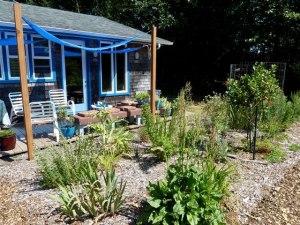 deckside garden