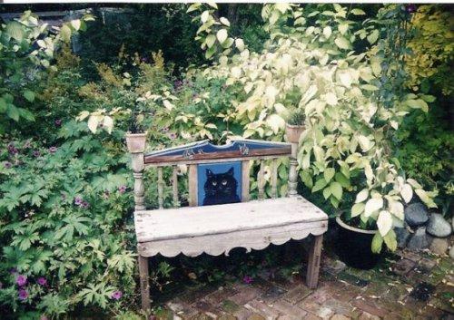 cat bench