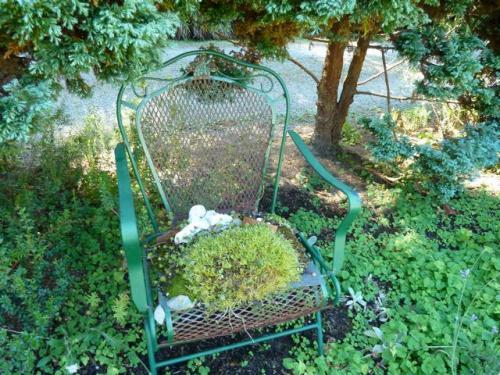 a refreshing spot of green