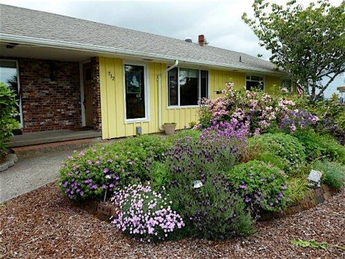 Cheri's front garden in mid spring.  Lovely!