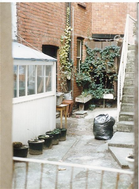 peeking into a courtyard