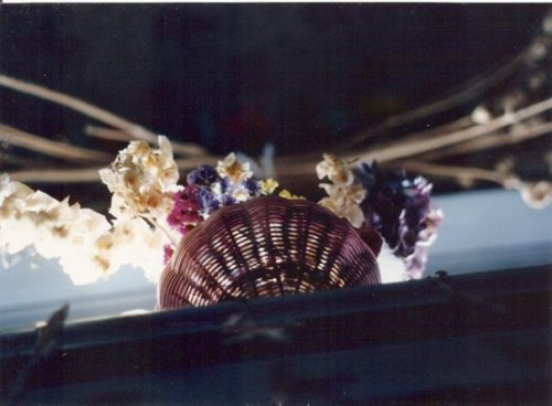 dried flowers in the piano window