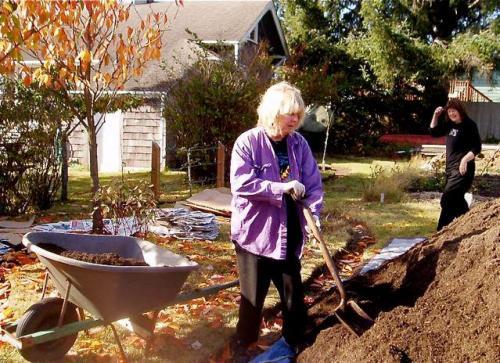 The first wheelbarrow full of soil.