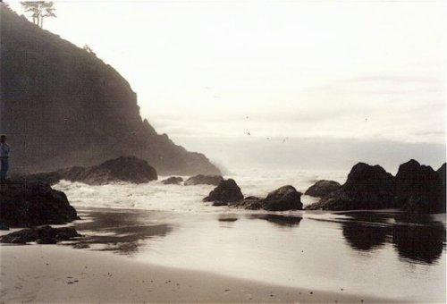 Beard's Hollow fishing rocks