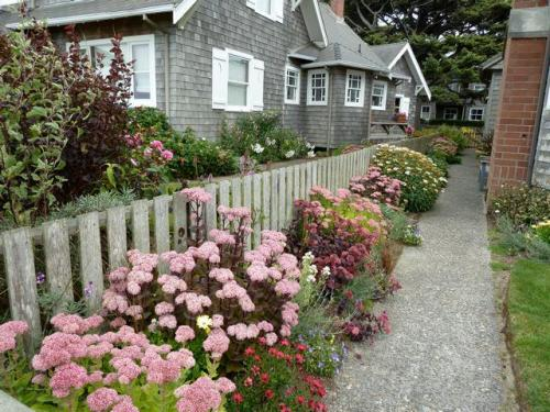 a walkway garden by the beach front road