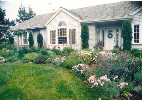 Carol's Nahcotta garden