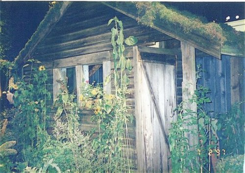 green roof.  I still do not have one....