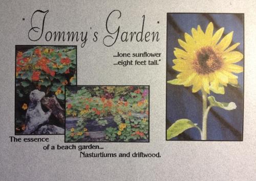 Tommy's garden
