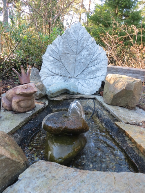 Water feature: the Gunnera leaf was a gift.