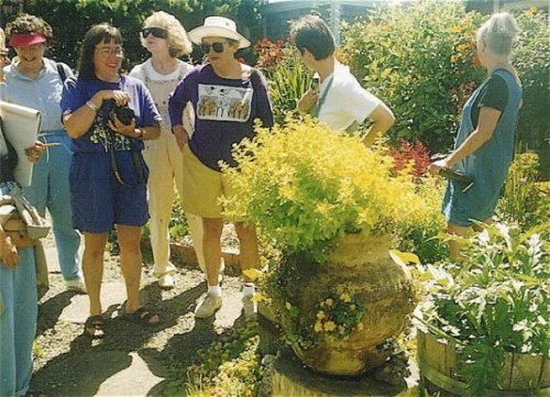 In June's garden (left, Lucy Hardiman)