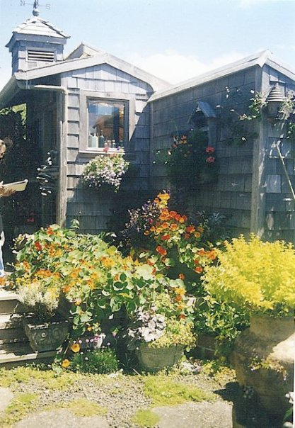 June's glorious garden shed