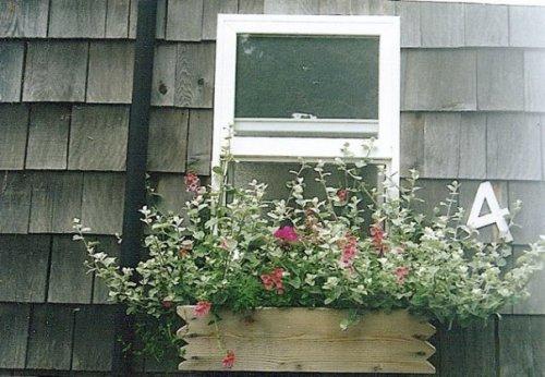 cottage windowbox at KBC