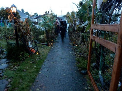 Some children were hesitant to enter the Avenue of Dead Plants.