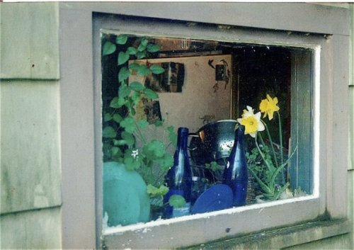 kitchen window from the back porch, spring '95