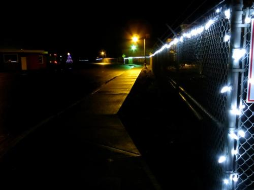 3 December, Christmas lights and the brand new section of the garden dark with promise.