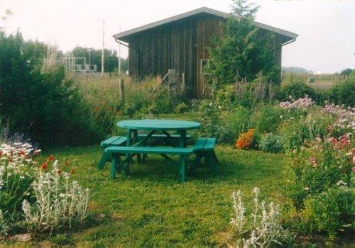 flower circle, '98