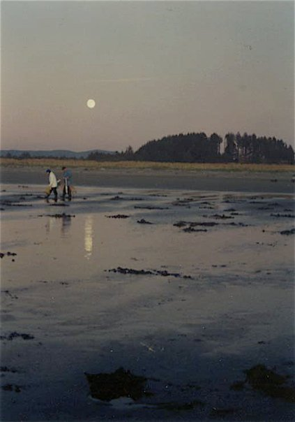 clamming by moonlight