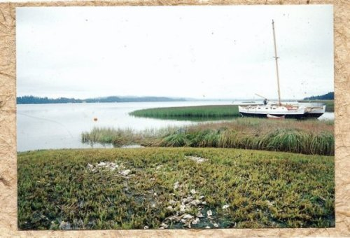 a photo of mine on a card made from Rae and Richard's spartina paper