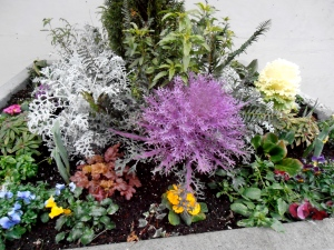 interlude: a planting in Seattle
