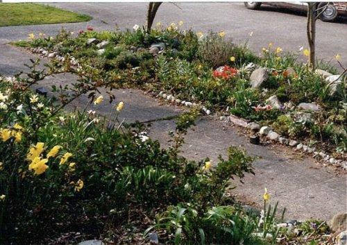 parking strip March 1990