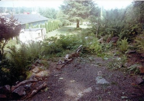 the patio by the front door when we first got the house (1994)