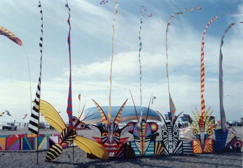 flying colours kites by George Peters