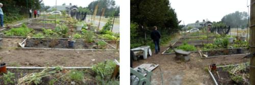 Klipsan Community Garden