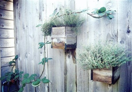 weathered planters
