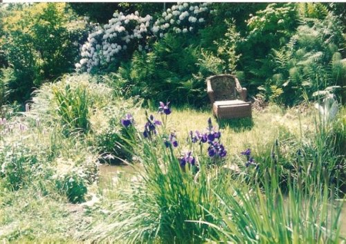 pond in May '96 with rhodos in bloom