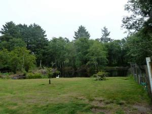 the pond, looking east from house gardens