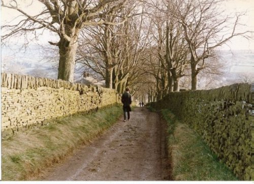 the road from the moors back down to the Parsonage