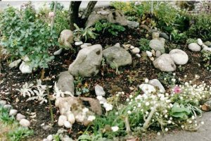 copying Reflective Gardens