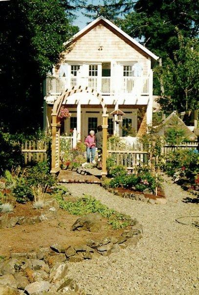 Donna's back garden