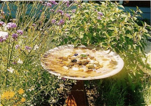 Sharon's beautiful bird bath.