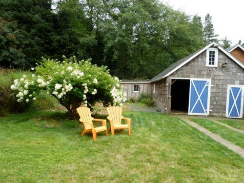 side yard and garage with arboreal hydrangea