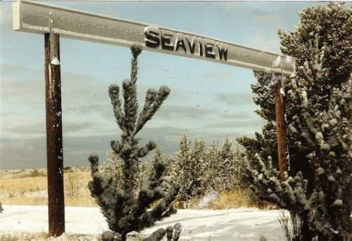 snow on the Seaview sign