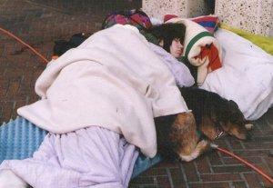sleeper with dog