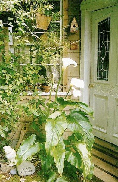 front door, early summer '98