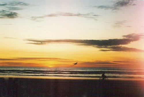 sunset kite flyer