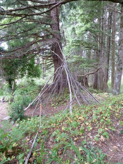 Someone had built a tepee of branches.