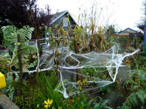 I haven't quite got the knack of spreading out this cobweb stuff.  I lose patience.