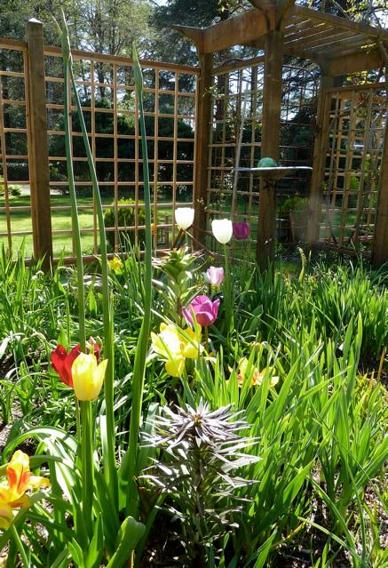 quintessential spring green with tulips