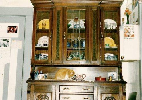 my china cabinet and cat Valene