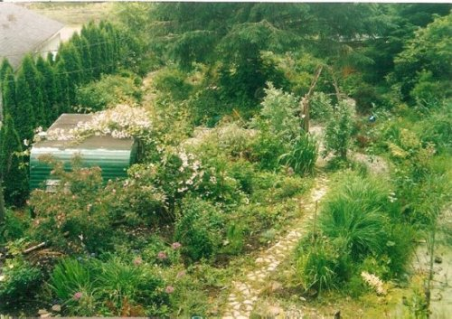 view from loft window, May 1998