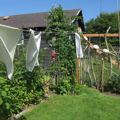 the old clothesline