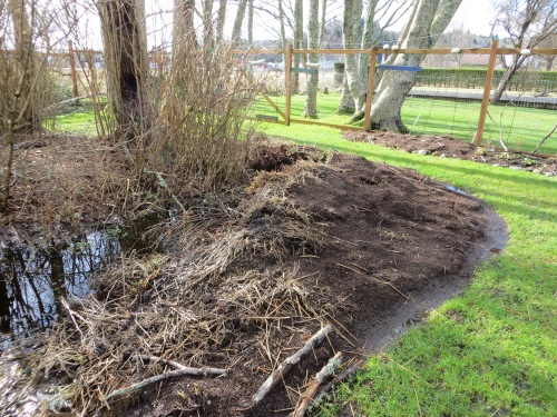 west side of bogsy wood shade bed expanded