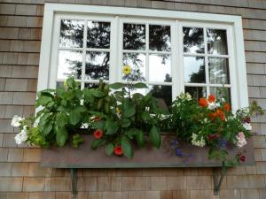 a classic cottage window