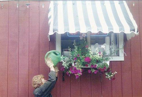 Robert watering Loose Kaboose windowbox