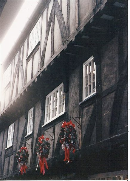 wreaths and windows
