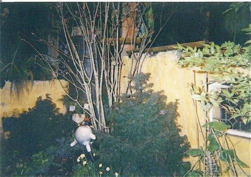 2002 display garden